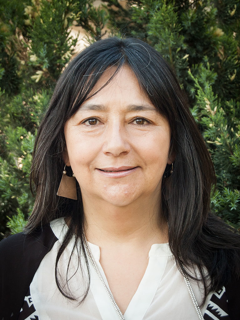 Paula Alonqueo Boudon prof